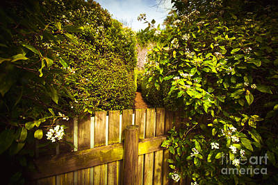 Labyrinth Photograph - Labyrinth Wrong Turn by Jorgo Photography - Wall Art Gallery