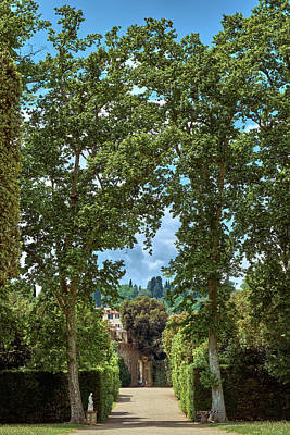 Photograph - Labyrinthine Medieval Garden by Fine Art Photography Prints By Eduardo Accorinti