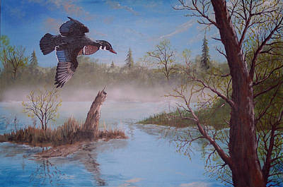 Wood Duck Painting - Lacamas Spring by Daniel McQuestion