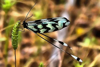 Painting - Lacewing by Tracey Harrington-Simpson