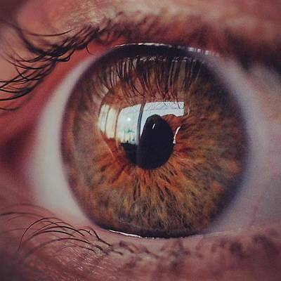 Eye Photograph - @laciee3 #eye #eyes #macro #micro by David Haskett
