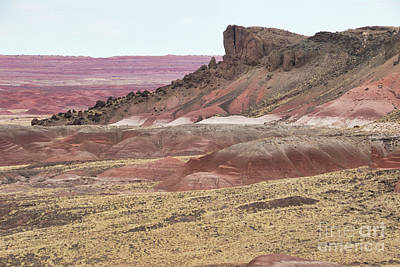 Photograph - Lacy Point, Painted Desert A9201l by Stephen Parker