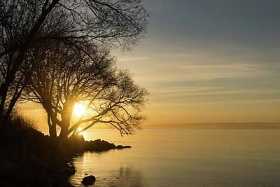 Photograph - Lacy Sunrise - by Georgia Mizuleva