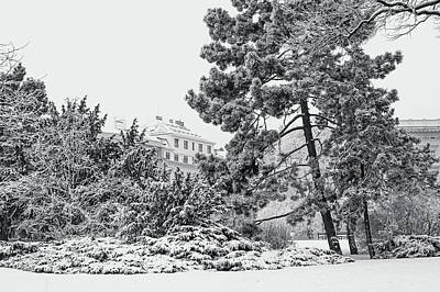 Photograph - Lacy Winter In Brno. Black And White by Jenny Rainbow