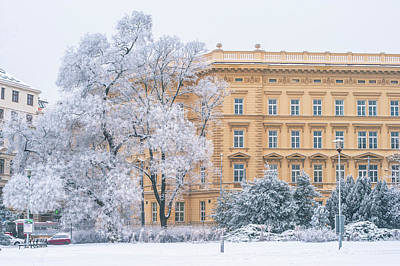 Photograph - Lacy Winter In Brno. Moravske Namesti by Jenny Rainbow