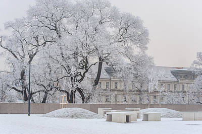 Photograph - Lacy Winter In Brno. Park Koliste by Jenny Rainbow