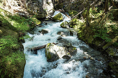 Photograph - Ladder Creek by Tom Cochran