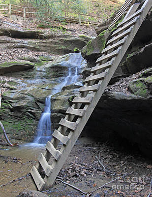 Ladder Trail At Turkey Run  Art Print