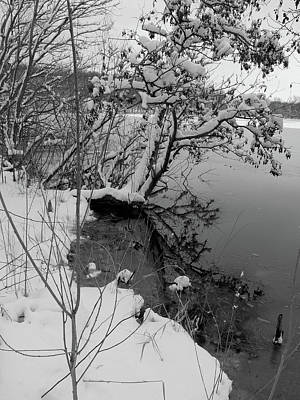 Art Print featuring the photograph Laden With Winter by Scott Kingery