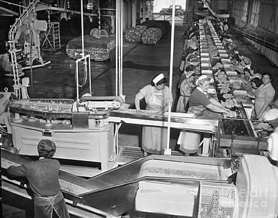 Photograph - Ladies On Packing Line On Cannery Row, Monterey Circa 1948 by California Views Archives Mr Pat Hathaway Archives