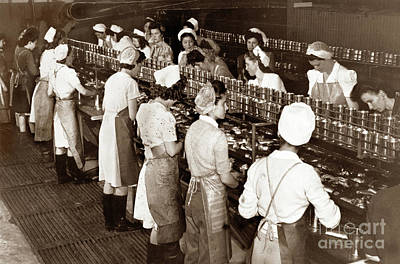 Photograph - Ladies Packing Sardines In Tall Cans Monterey 1941 by California Views Mr Pat Hathaway Archives