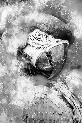 Macaw Mixed Media - Lady Bird Bw by Melissa Smith