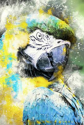 Macaw Mixed Media - Lady Bird by Melissa Smith