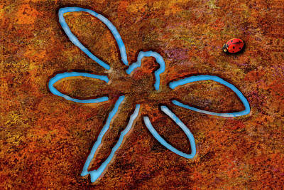 Photograph - Lady Bug And Dragonfly by Paul Wear