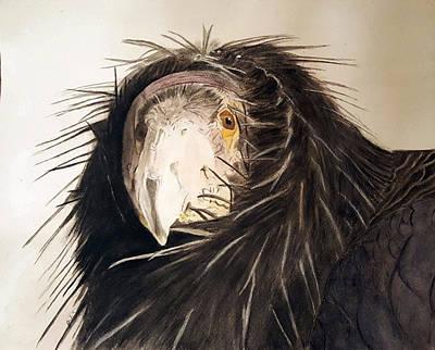 Condor Painting - Lady Condor by Jodi Schneider