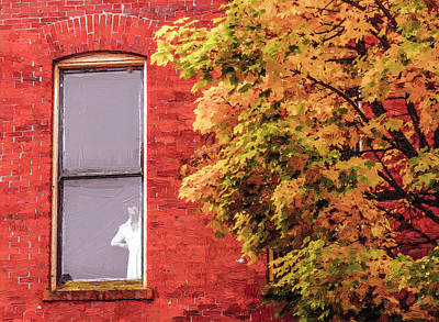Photograph - Lady In The Window by Dennis Bucklin
