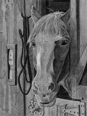 Charcoal Horse Drawing - Lady - Print by Christina Steward