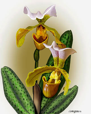 Mixed Media - Lady Slipper by Anthony Seeker