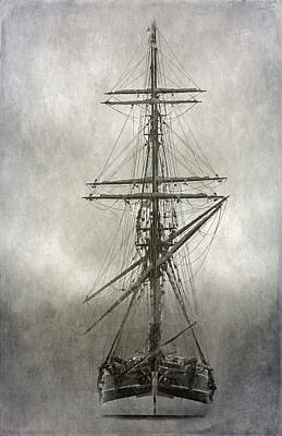 Lady Washington Art Print by Angie Vogel