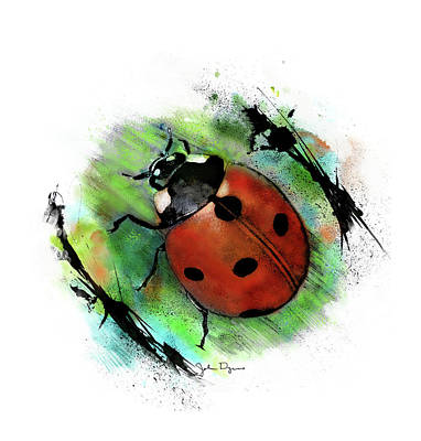 Drawing - Ladybug Drawing by John Dyess