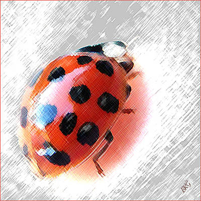 Photograph - Ladybug Spectacular by Ben and Raisa Gertsberg