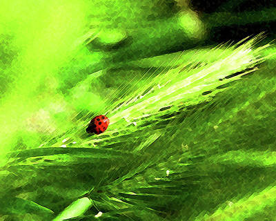 Art Print featuring the digital art Ladybug by Timothy Bulone