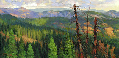 Mountain Paintings - Ladycamp by Steve Henderson