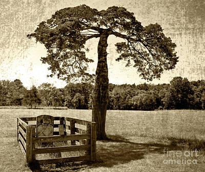 Photograph - Lafayette Meeks Grave by Pete Hellmann