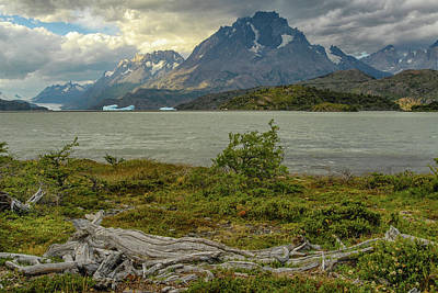 Photograph - Lago Grey - Torres Del Paine by Alan Toepfer