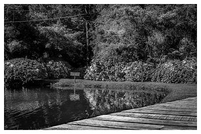 Photograph - Lago-horto-parque Estadual-campos Do Jordao-sp by Carlos Mac