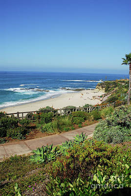 Laguna Afternoon Art Print by Timothy OLeary