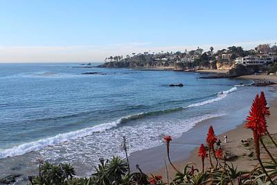 Photograph - Laguna Beach by Brian Eberly