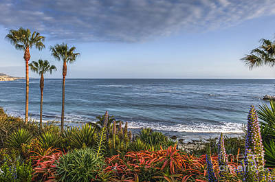Photograph - Laguna Beach Heisler Cove by David Zanzinger
