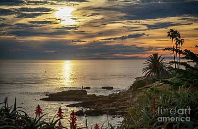 Photograph - Laguna Beach Paradise by Mariola Bitner