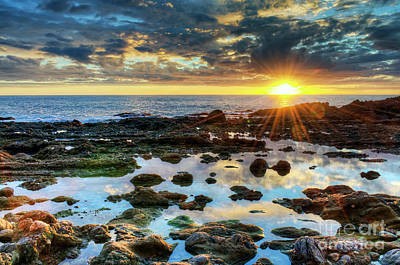 Art Print featuring the photograph Laguna Beach Tidepools by Eddie Yerkish