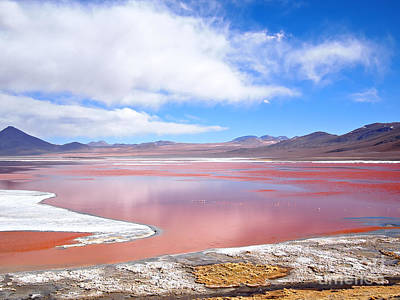 Photograph - Laguna Colorada Red Water Lake by IPics Photography