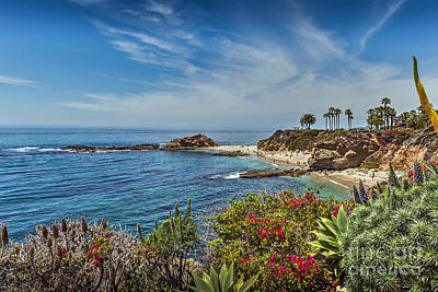 Photograph - Laguna Goff Cove Island  by David Zanzinger