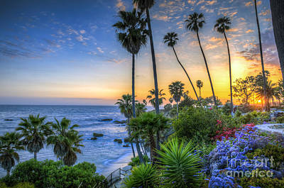 Photograph - Laguna Heisler Cove Sunset by David Zanzinger