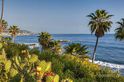 Photograph - Laguna Heisler Park  by David Zanzinger