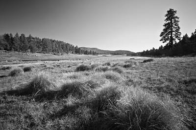 Photograph - Laguna Meadows And Big Laguna by Alexander Kunz