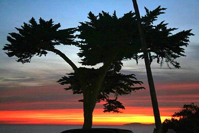 Soap Suds - Laguna Sunset by Rosanne Nitti