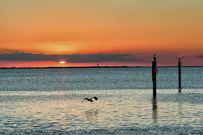 Photograph - Laguna Vista Sunset by Victor Culpepper