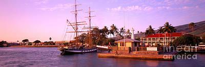 Hawaiian Artifacts Photograph - Lahaina Boat Harbor by Carl Shaneff - Printscapes