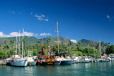 Lahaina Harbor - Maui Art Print by William Waterfall - Printscapes