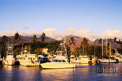 Photograph - Lahaina Harbor by Greg Vaughn - Printscapes