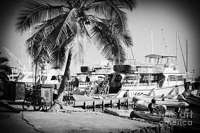 Photograph - Lahaina Harbour by Sharon Mau