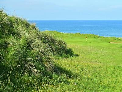 Recently Sold - Sports Royalty-Free and Rights-Managed Images - Lahinch Golf Club - Hole #6 - Dune Grass by Scott Carda