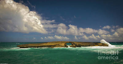 Photograph - Laie Point by Mitch Shindelbower
