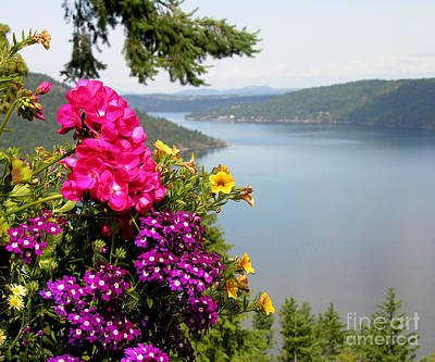 Photograph - Lake And Flowers by Anne Gordon