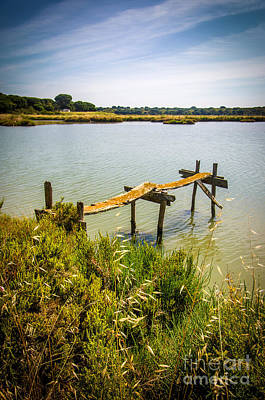 Park Scene Photograph - Lake And Pier by Carlos Caetano